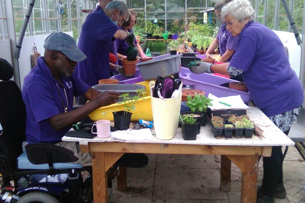 Group take home planters