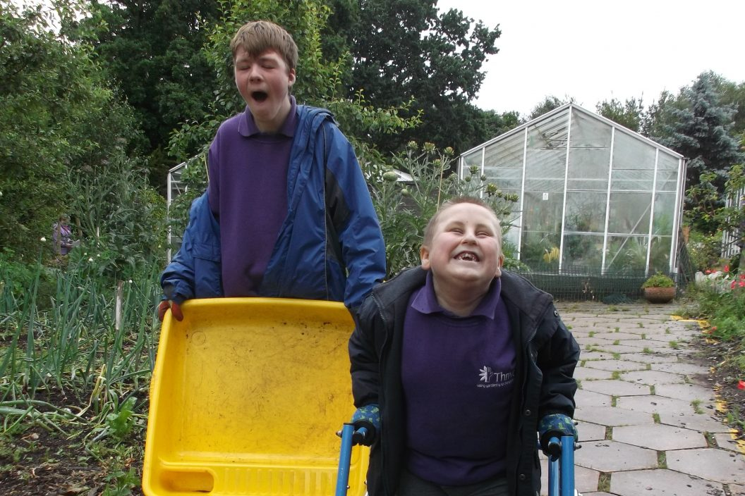 Bham connor and billy passion for gardening