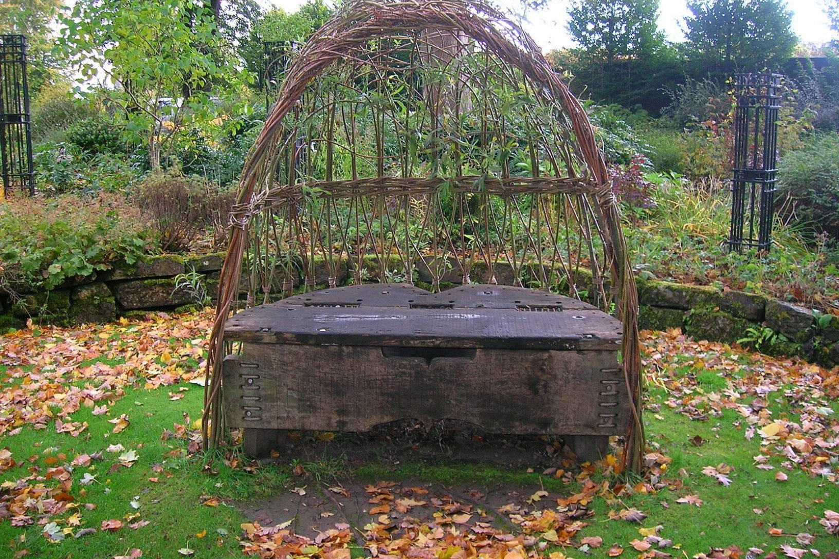 Willow structure 1