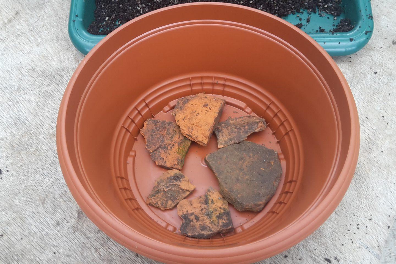 Crocks in pot