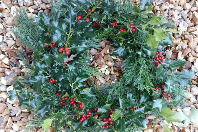 Festive wreath 1