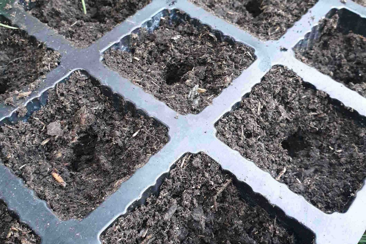 Create holes for seed