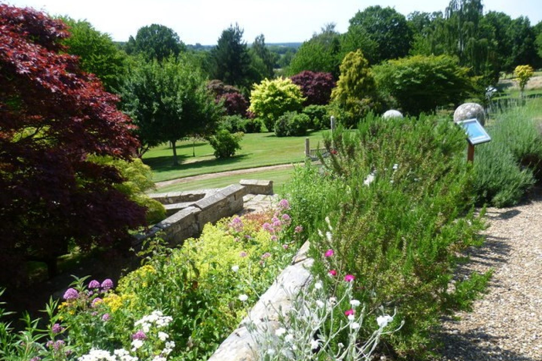 Healing garden 2