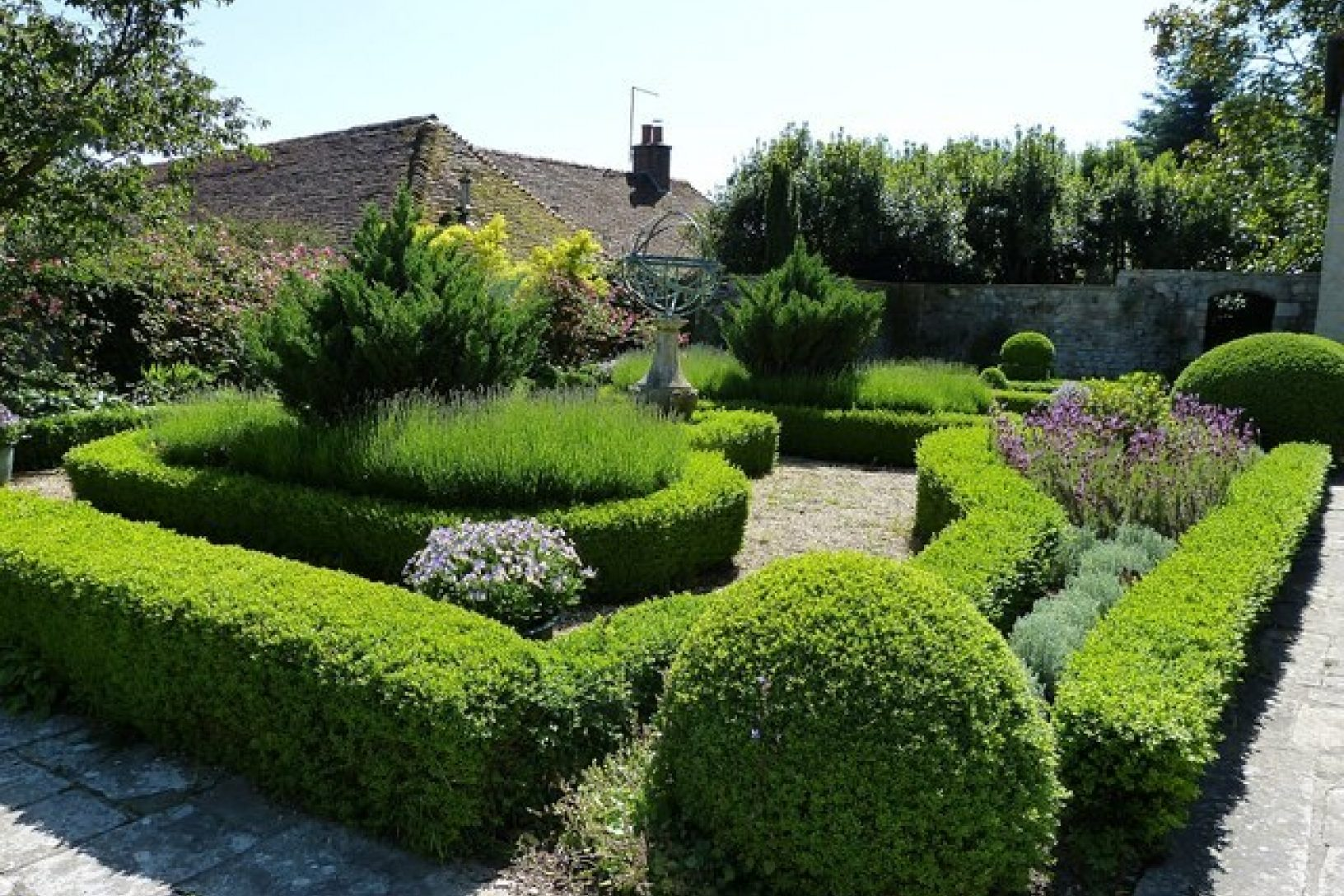 Box hedge topiary