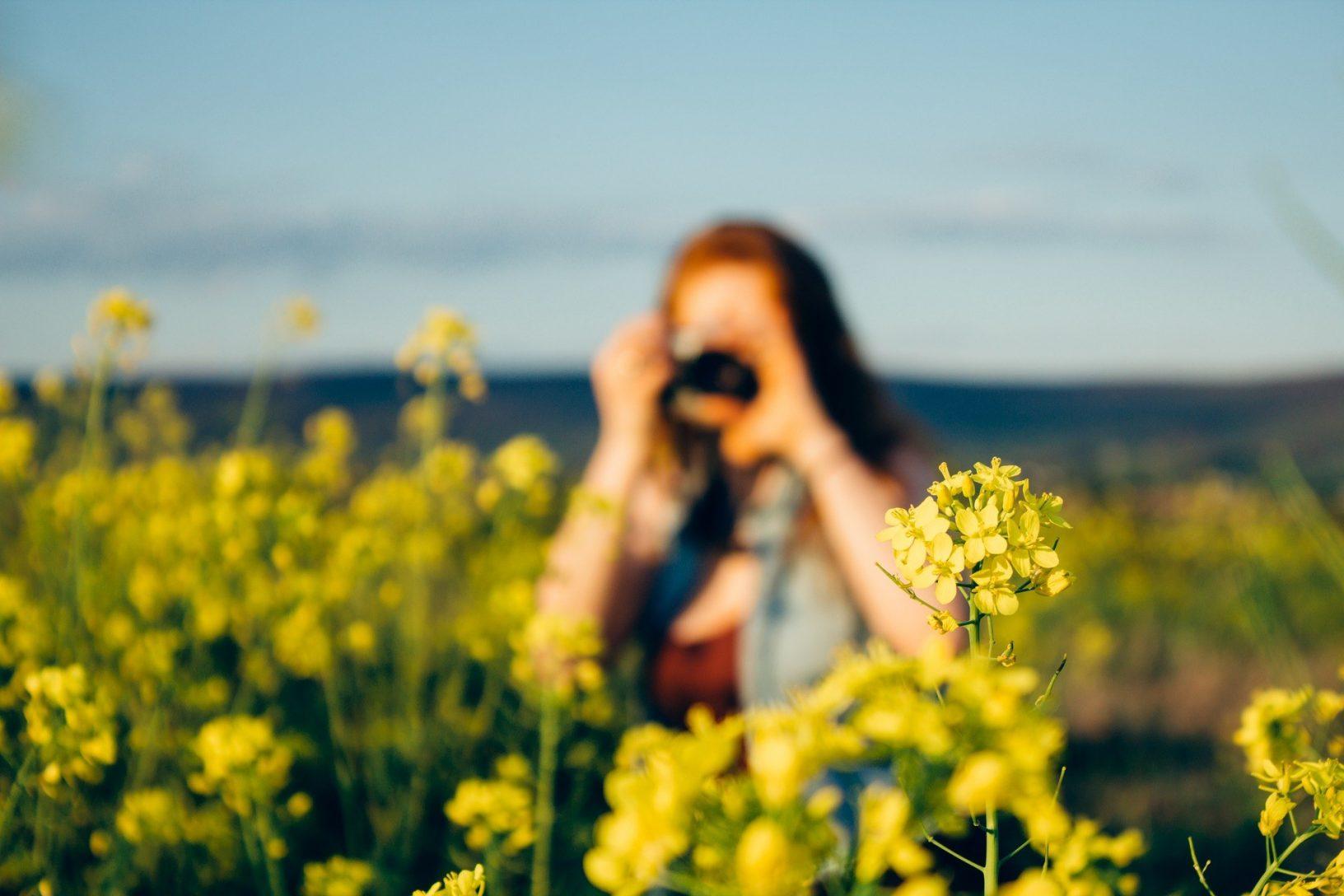 Woman taking photo of flower field