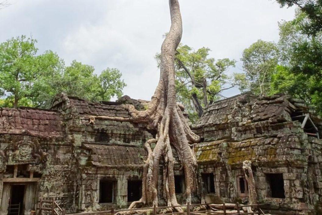 Cambodia Trek Challenge Media 9