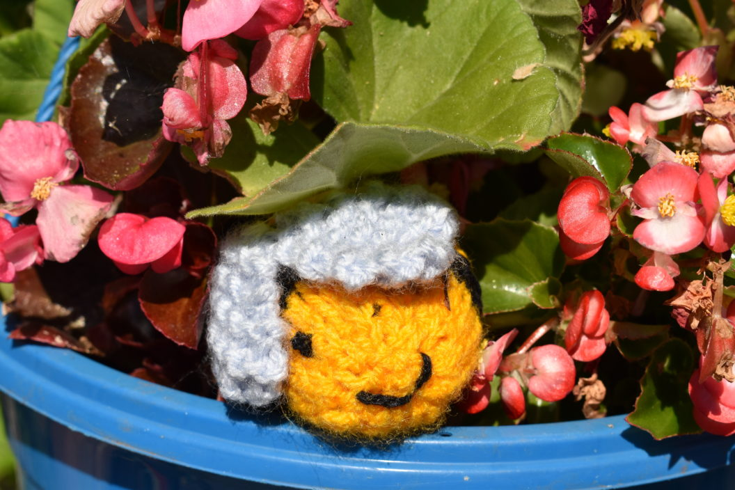 Knitted bee in plant pot
