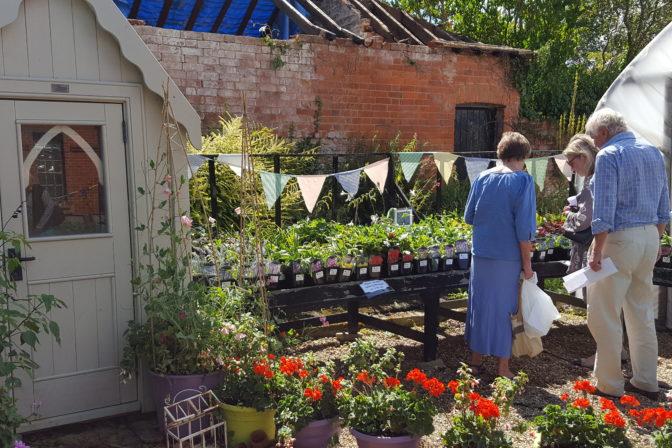 Garden party sale