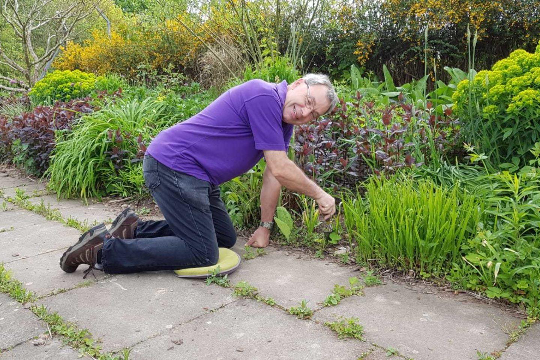 Malcolm gardening