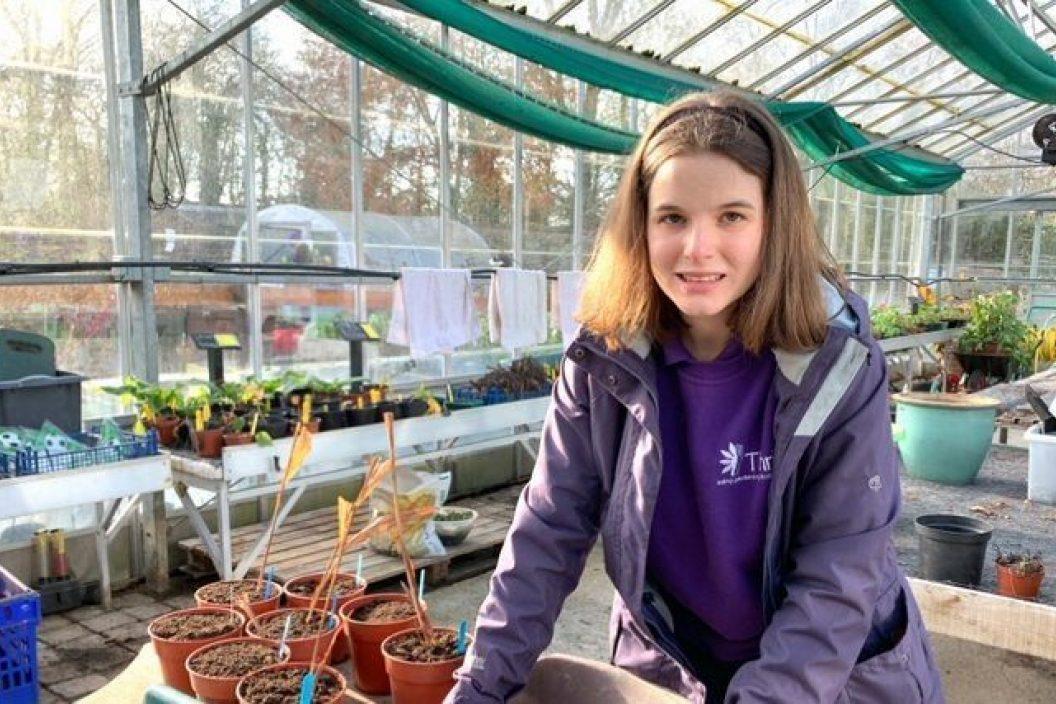 Katy greenhouse