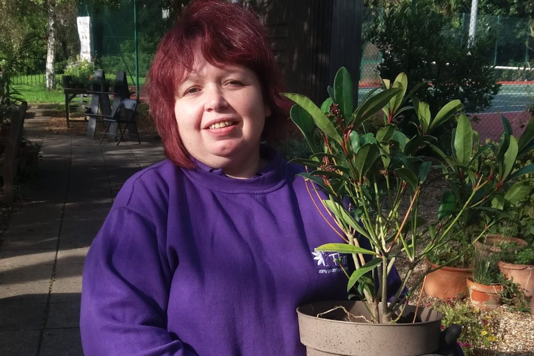 Sharon and plant