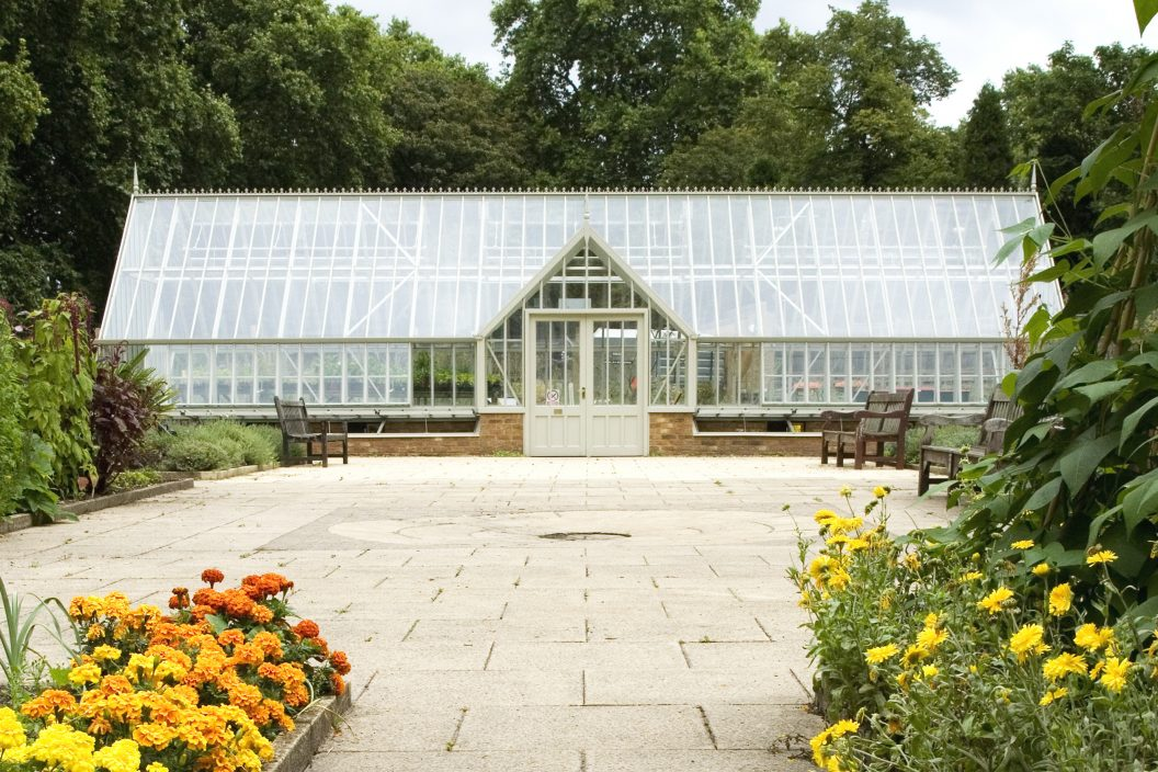 Glasshouse in Herb Garden Battersea