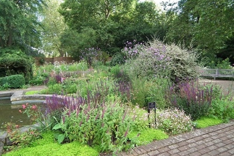 Old English Garden Thrive web ready