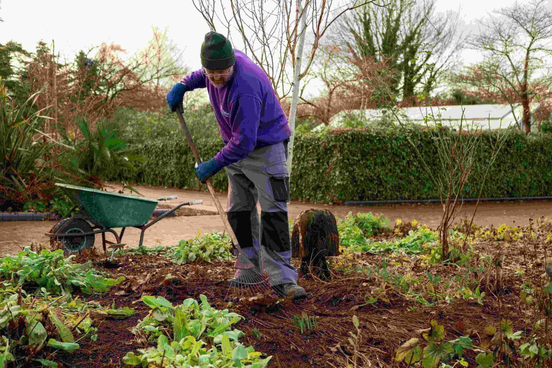 Birmingham garden volunteer