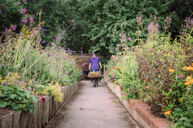 Client gardener Leo 1 of 1