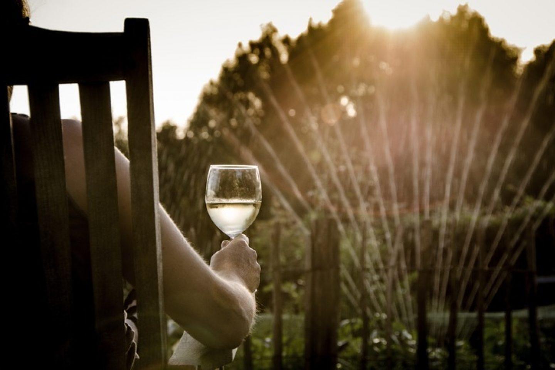 Light people sun woman wine night 863850 pxhere com