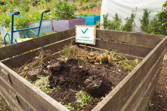 Compost heap 2