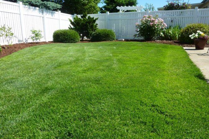 Landscape nature grass fence plant lawn 994438 pxhere com