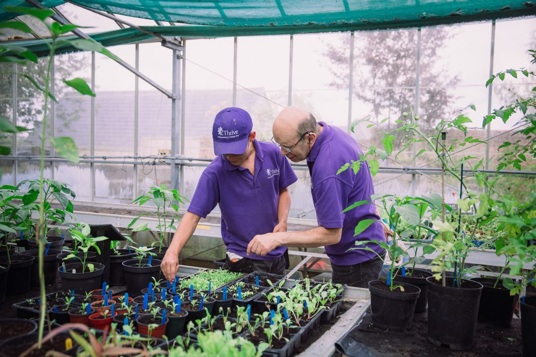 Chris M with vol in greenhouse Charlie Garner 2019 2