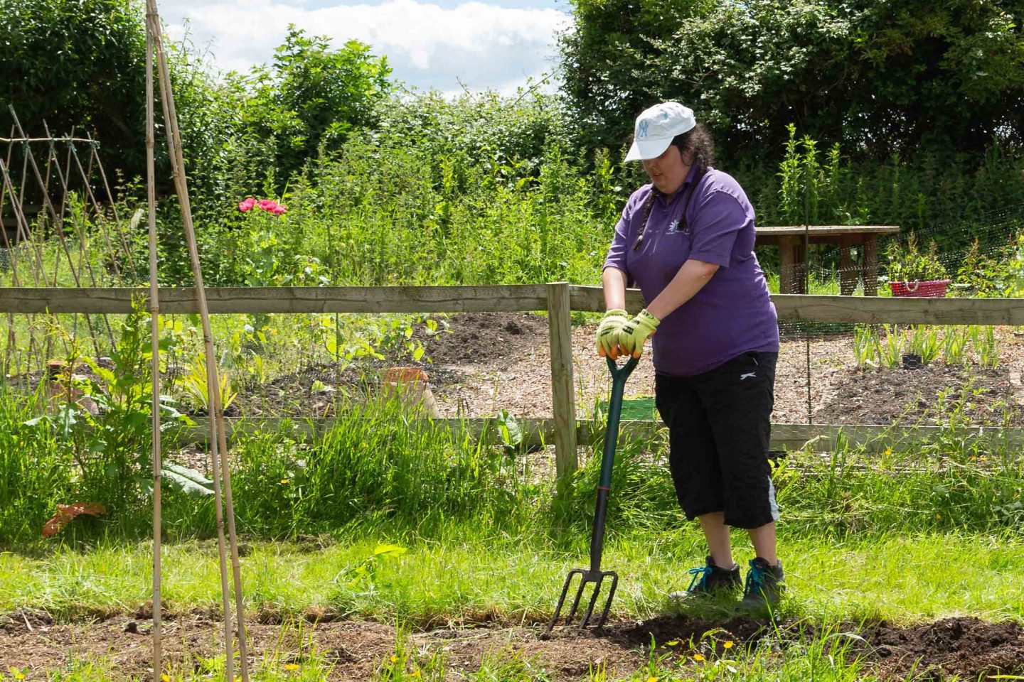 Carly working in allotment