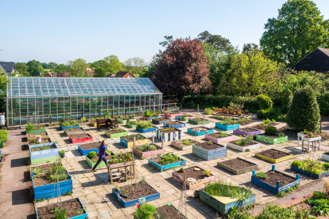 Garden and glasshouse