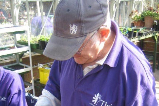 Older gardeners