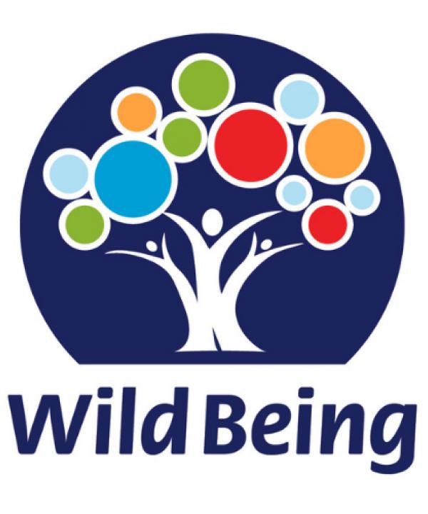 WB logo web1
