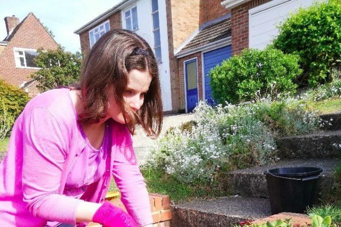Katy T planting